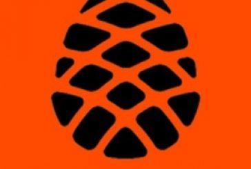 Xiaomi анонсирует процессор Рinecone 28 февраля