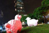 Камера HTC U11 превзошла Google Pixel