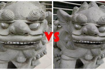 Сравнение камеры Xiaomi Mi Max 2 VS Xiaomi Mi 6